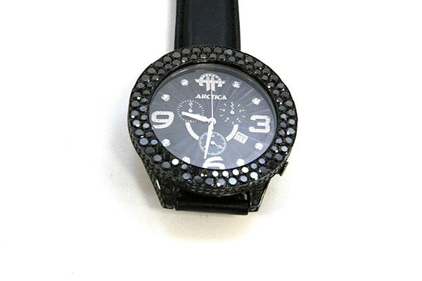 Arctica Men's Watch